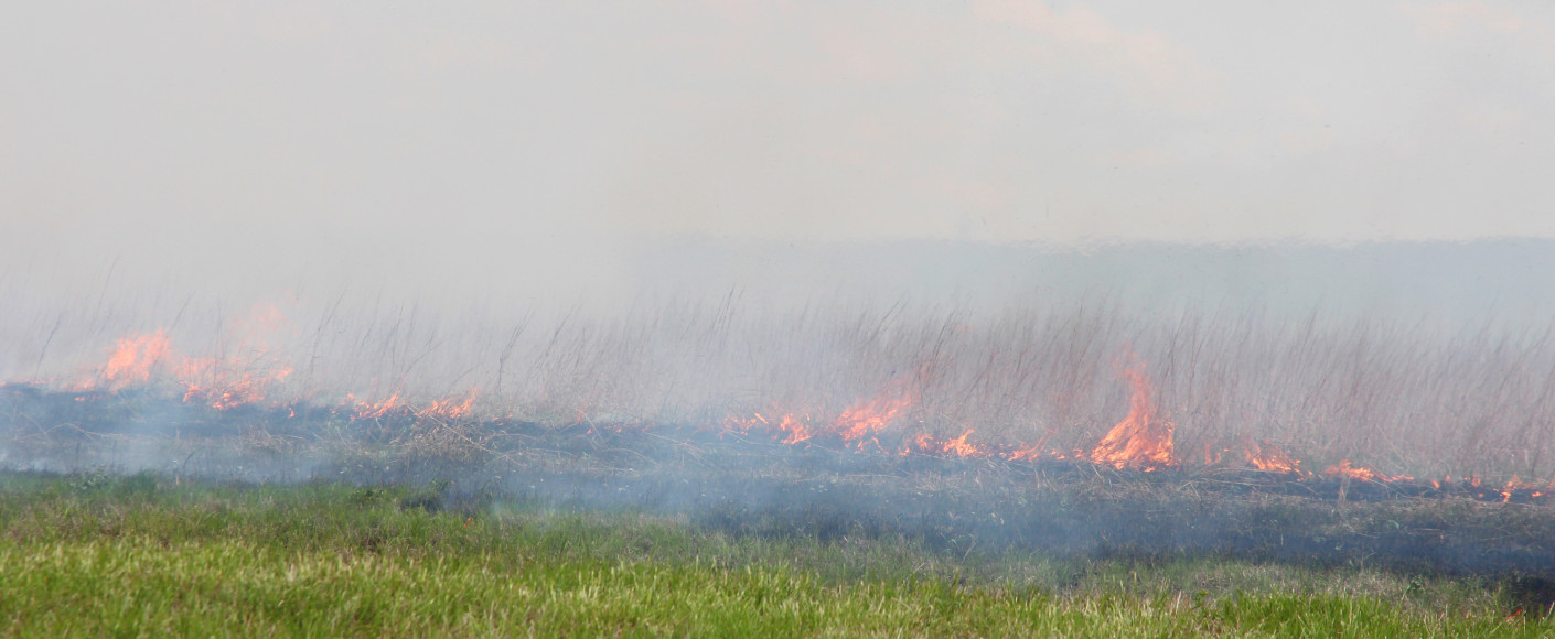 Controlled burns in Kansas
