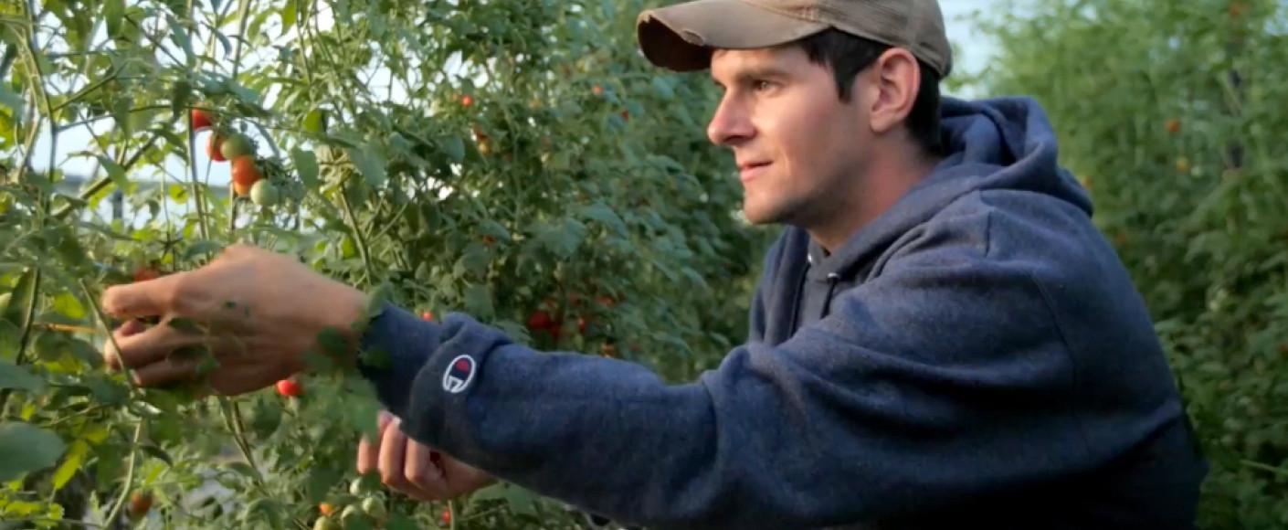 Juniper Hill Farms Scott Thellman Picking