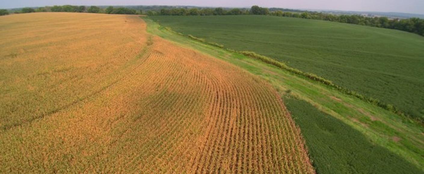 Winsor Family - Contour Farming