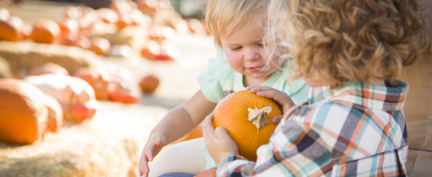 Children at a Pumpkin Patch