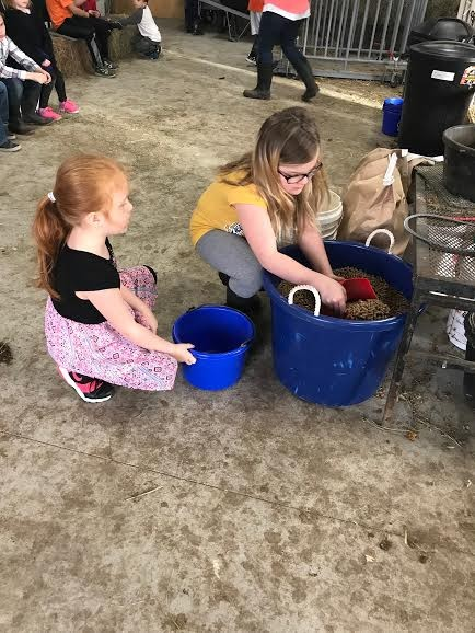 Bluestem students help with farm chores at school