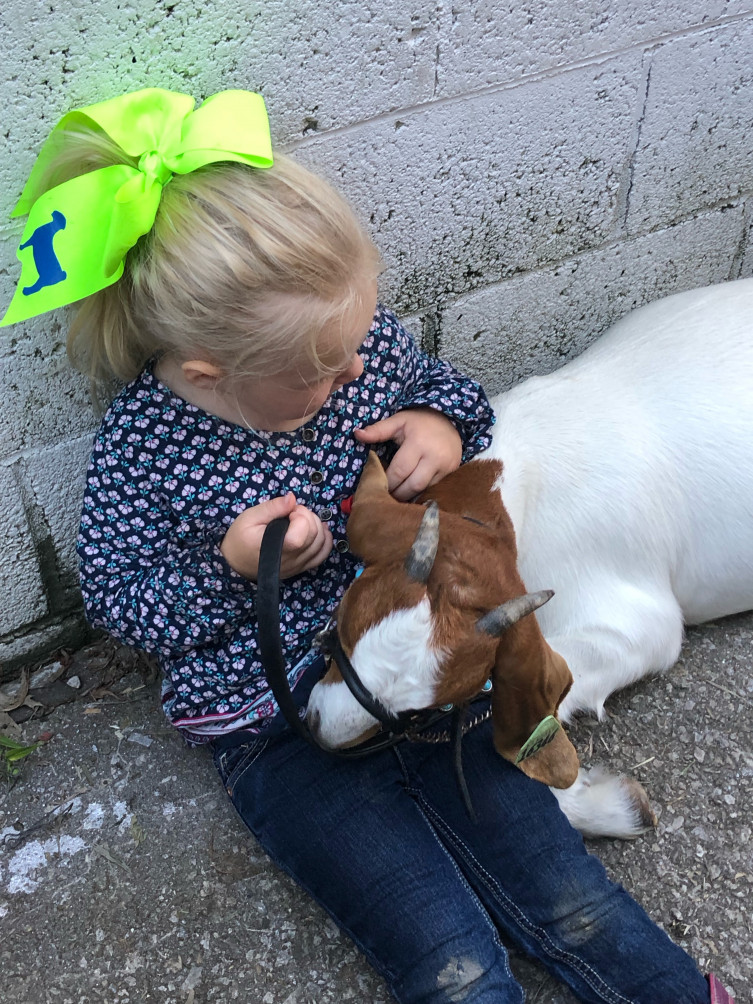 Things farm kids learn - caring for animals