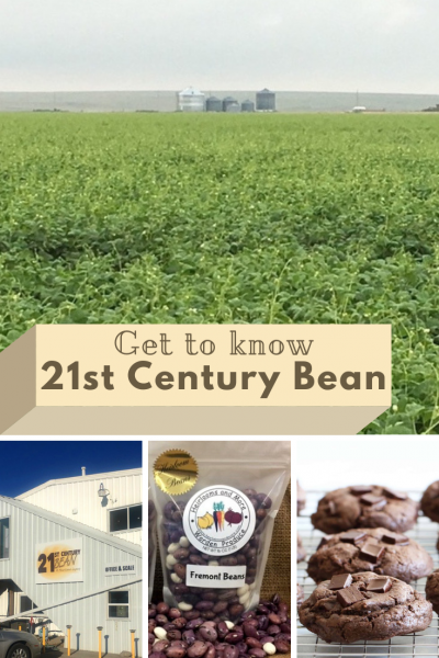21st Century Bean for Pinterest