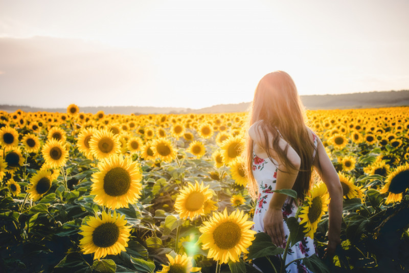 Woman in a sunflower field