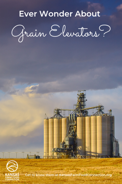 How do grain elevators work
