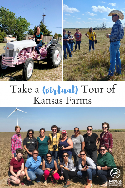 Take a virtual farm tour - pin this