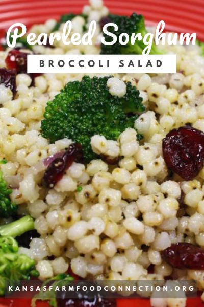 Best Broccoli Salad with Sorghum