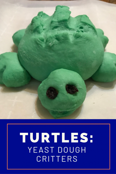 Pin this Cute DIY Craft - Baking Turtle for Kids