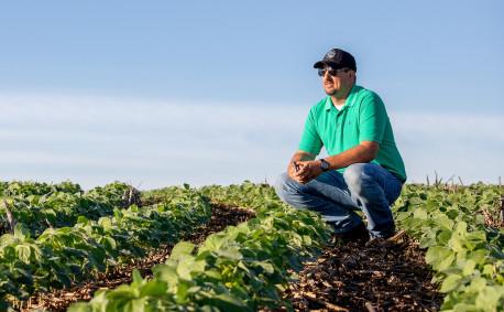 Brett Neibling soybean field - thumbnail