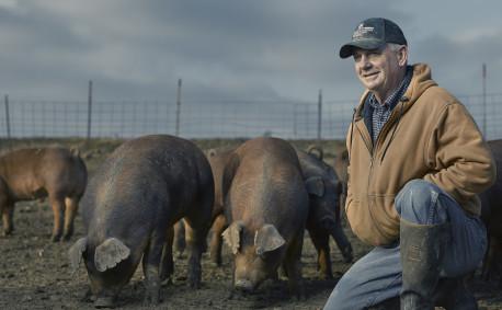 Good Farms: Kansas Pig Farmers