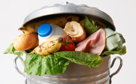 Dairy Blog Food Waste