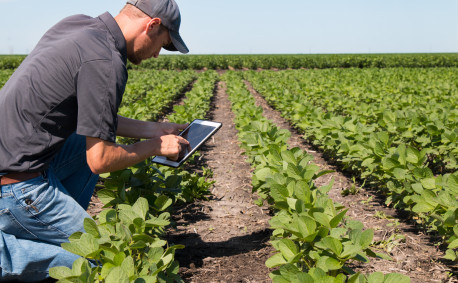 Farmer in Field With Technology