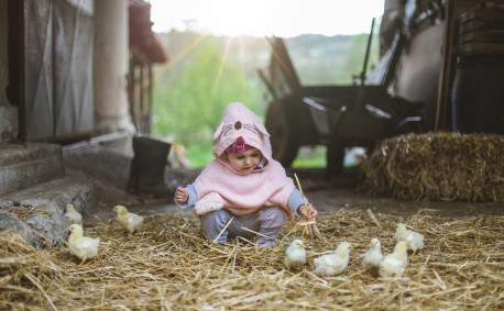 Baby in barn with chicks - spring chickens