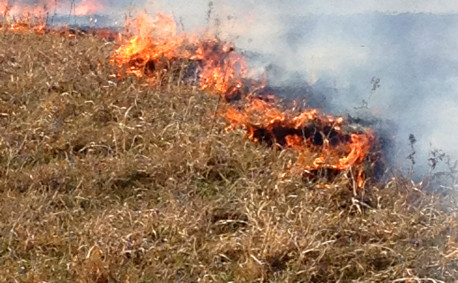 Controlled burns in Kansas 2